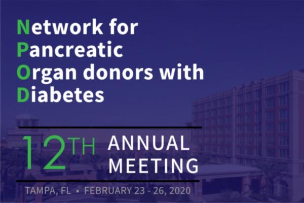 nPOD-Meeting-2020